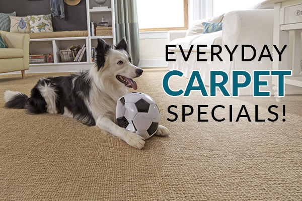 Everyday Carpet Specials - Visit Flooring & Carpet Warehouse today!